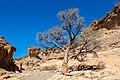 Cañón Sesriem, Sossusvlei, Namibia, 2018-08-06, DD 195.jpg
