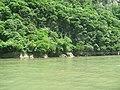 Cañon del Sumidero. - panoramio.jpg