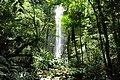 Cachoeira 22jan2010.jpg