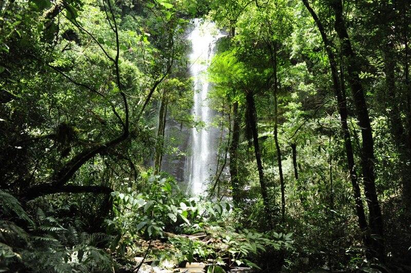 Ficheiro:Cachoeira 22jan2010.jpg