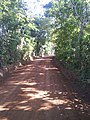 Camino de Amaquilco - panoramio.jpg