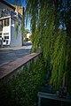 Canet-en-Roussillon - Rue du Moulin - Canal.jpg