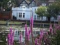 Carshalton Ponds and Heritage centre. 31-07-11..jpg