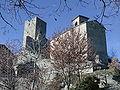 Castello di carpineti sant'andrea.jpg