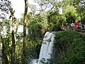 Cataratas do Iguaçu - panoramio (59).jpg