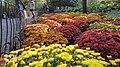 Central Park, New York, NY, USA - panoramio (144).jpg