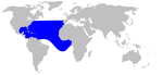 Gervais' beaked whale range