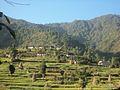 Chalise, Majhuwa 45900, Nepal - panoramio (6).jpg