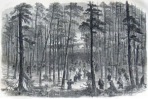 Charge of Weaver's Brigade Across the Salkehatchie.jpg