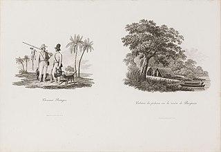 Chasseurs Portugais