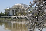 全米桜祭り