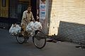 Chicken Transportation - Bow Street - Kolkata 2013-03-03 5190.jpg
