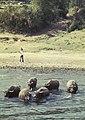 China1982-157.jpg
