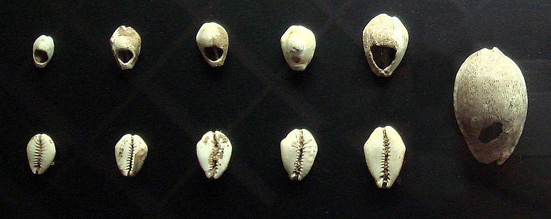 Chinese shell money 16th 8th century BCE.jpg