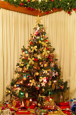 A family christmas tree.