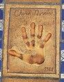 Chuck Norris Handprint.jpg