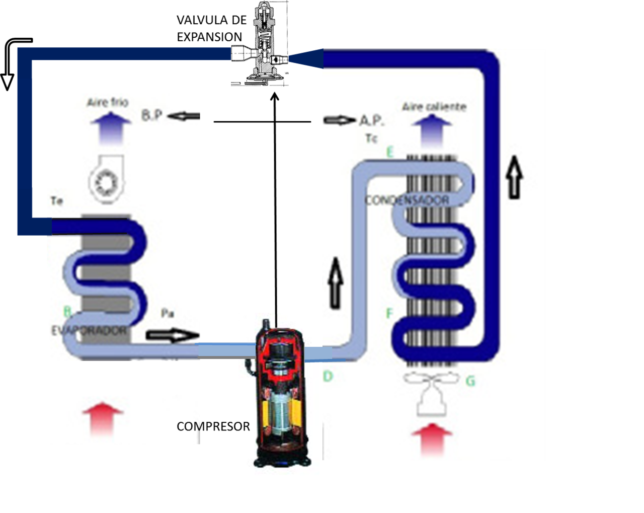 Circuito Wikipedia : Archivo circuito frigorífico wikipedia la