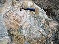 Clast-rich mixtite (Coleman Member, Gowganda Formation, Paleoproterozoic, ~2.3 Ga; Percival Lake roadcut, Ontario, Canada) 13 (46810511625).jpg