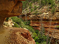 Cliff Spring trail. Grand Canyon. 08.jpg