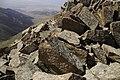 Climbing Tastar-Ata (3.847m) (15126044835).jpg