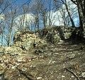 Codlea - Cetatea Neagra (detaliu 2).jpg