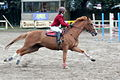 Concours hippique 08092013 06.JPG