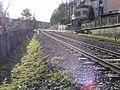 Contrexéville (Vosges) - panoramio (29).jpg