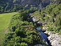 Corsica - Bastia-Barchetta train - Golo river - panoramio.jpg