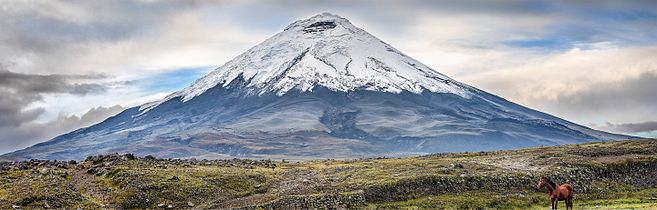 Cotopaxi with horse.jpg