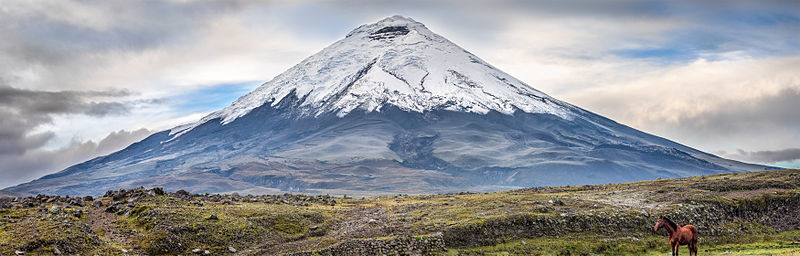 File:Cotopaxi with horse.jpg
