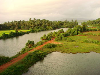 Countryside South of Goa - India.JPG