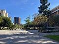 Court of sciences UCLA.jpg