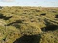Craven Moor, Greenhow - geograph.org.uk - 91831.jpg