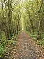 Cycle path between Robin Hood's Bay and Ravenscar - geograph.org.uk - 71541.jpg