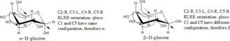 Monosaccharide nomenclature - Image: Cyclic sugars