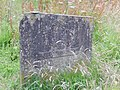 DSCN6224 Helensburgh Duchess Wood.jpg