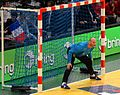 Danijel Saric-GoldenLeague-20160110 1.JPG