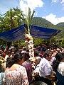 Danza de la caña en Tlilapan, Veracruz.jpg