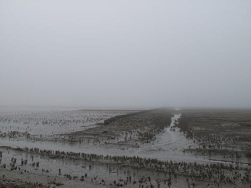 Das Watt bei Ebbe und Nebel vor der Nordseeinsel Pellworm