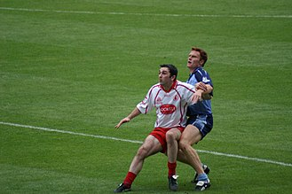 Gaelic games - Davy Heart and Peadar Andrews 2005 All Ireland Quarter Final