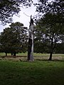 Dead Tree, Richmond Park - geograph.org.uk - 1007551.jpg