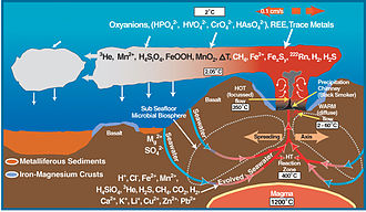 Hydrothermal vent - Deep-sea vent biogeochemical cycle diagram