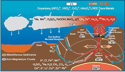 Deep sea vent biogeochemical cycle diagram