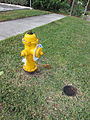 Deerfield Beach Jan2014 Hydrant 2.JPG