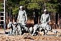 Defense.gov photo essay 111201-A-3108M-007.jpg