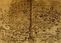 Delle famiglie nobili Napoletane (1580) (14596838090).jpg