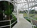 Dentro da Estufa do Jardim Botânico de Curitiba (4).jpg