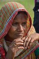 Devotee - Charak Puja - Narna - Howrah 2014-04-14 0414.JPG