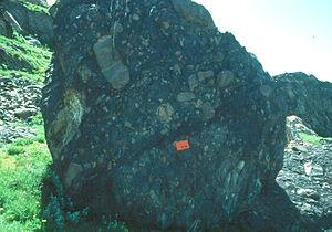 Diamictite - Boulder of diamictite of the Mineral Fork Formation, Antelope Island, Utah, United States