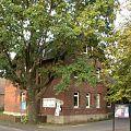 Dibbesdorf Alte Schule.jpg